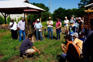Participants inspect cover crops in the field