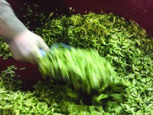 making relish