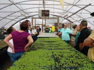 The class tours the microgreens operation at City Roots Farm