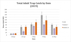 Figure 3. Adult SWD trap catch was not significantly different among treatments.