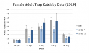 Figure 4. Female adult SWD trap catch was not significantly different among treatments.