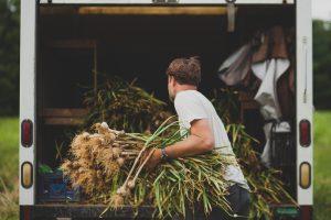 boy loading onions into truck