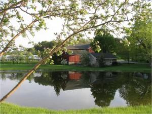 Fig. 1 Elderberry Pond Farm
