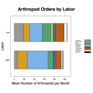 Arthropod_Order_Composition_Labor