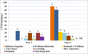 Figure 5.9. Incidence of cucurbit yellow vine disease (CYVD) in years two and three. Incidence was determined based on symptoms of yellowing and collapse in the field and confirmed using PCR and strain-specific primers. A one-way ANOVA was run to determine differences and Tukey's HSD was run for separation of means. Treatments with the same letters indicate no significant difference (α=0.05) in CYVD incidence between treatments based upon a one-way ANOVA and Tukey's HSD.