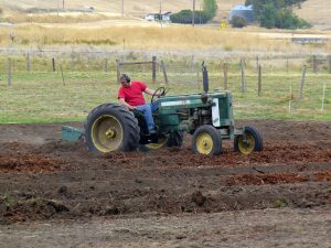 Chris plowing pollinator plot fall 2018