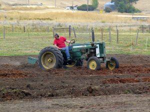 Chris plowing pollinator plot fall 2018