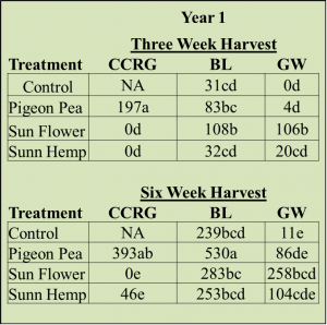 cover-crop-regrowth-and-weed-biomass-obj-2-year-1