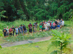 Breadfruit agroforest planting