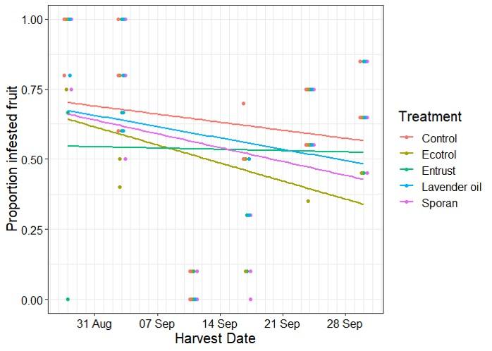 Graph depicting spotted-wing drosophila infestation of raspberries