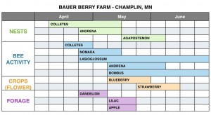 Exhibit 4 Bauer Berry Farm pre and post forage chart