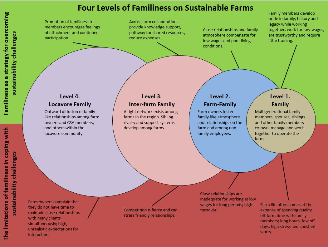 Four levels of familiness model.