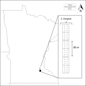 Location of study site within Minnesota.  Inset shows number and orientation of replicates. For each replicate, whole plot boundaries are denoted by solids lines and subplot boundaries by dashed lines.