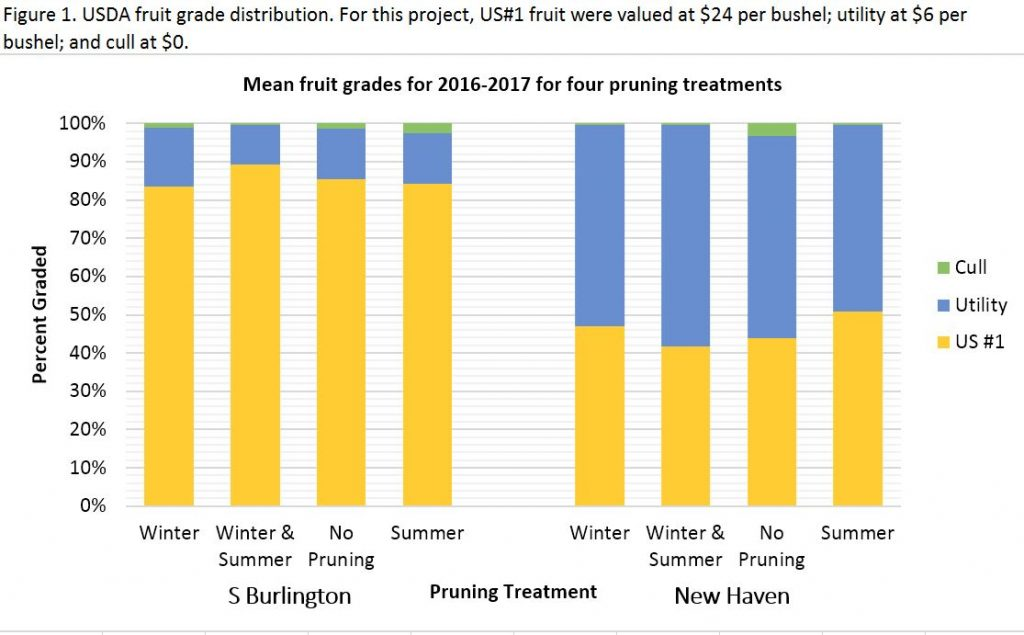 USDA fruit grade distribution by orchard / cultivar and pruning treatment.