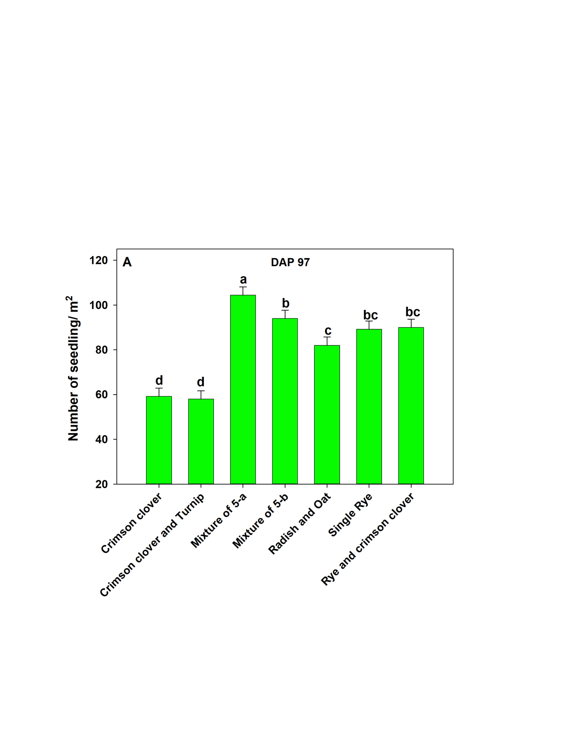 Figure 1. Stand establishment of different cover crops on February 3, 2020. DAP- Days after planting.