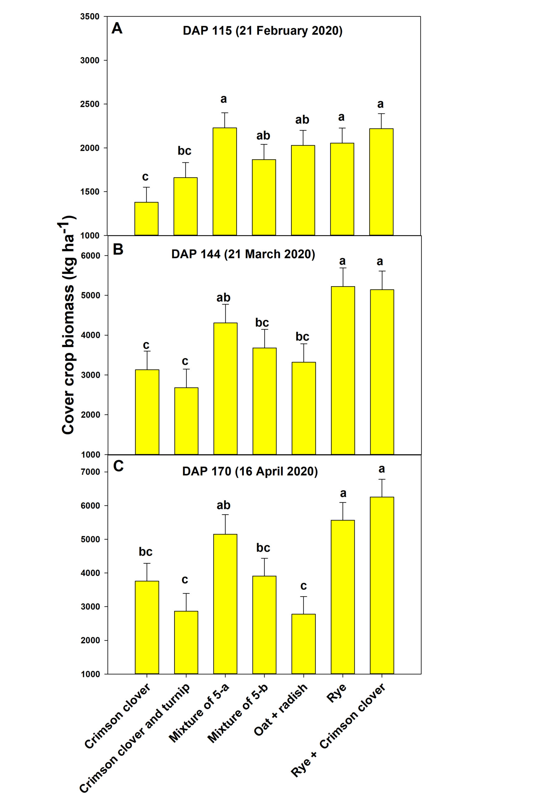 Figure 3. Biomass production of cover crops. DAP- Days after planting.