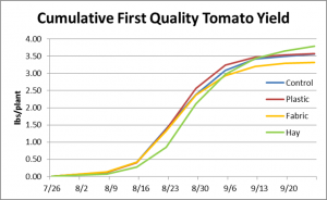 Cumulative tomato yield by treatment