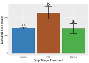 Figure 3: Comparison of Kernza intermediate wheatgrass grain yields subjected to strip-tillage at different times between the third and fourth harvests. Error bars represent standard error of the mean. Treatments sharing a letter are not significantly different from each other at α = 0.05.
