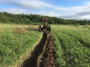 tractor cutting a swale in a field with a two-bottom plow