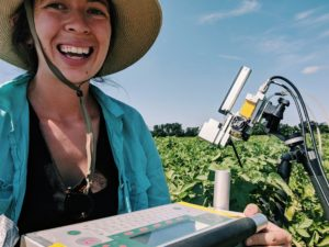 Researcher measures leaf level photosynthesis on a potato plant