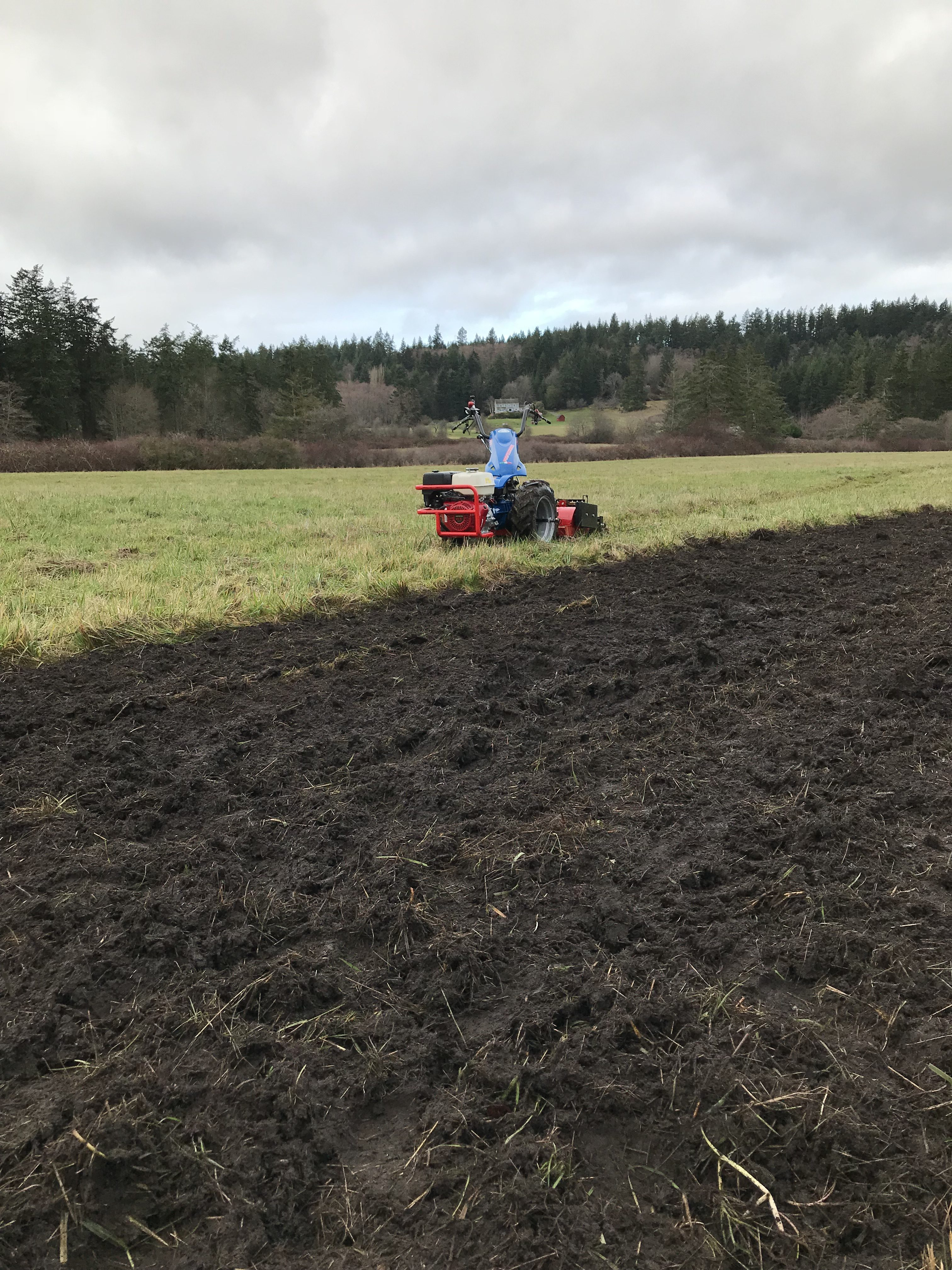 Walk behind tractor and stone burying plow