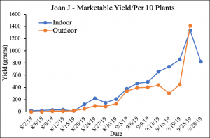 Graphs depicting raspberry marketable yield (g/10 plants) over growing season, individual charts by variety comparing indoor and outdoor production