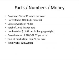 Facts and Figures. This image illustrates Manzini Farms estimates for lamb/sheep production. Primary indicators for making this decision were profit, expenses and energy inputs.