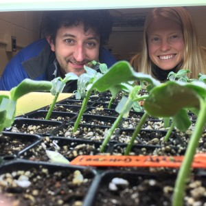 Michael teaching Petra to graft cucurbits!