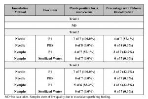 Table 3.3. Results of pathogenicity tests on zucchini (Cucurbita pepo 'Costata Romanesca') inoculated using either needle or squash bug nymphs during summer 2016. For each method, eight plants each were inoculated with S. marcescens strain P1 or phosphate buffered saline (PBS). The experiment was repeated three times. Inoculated plants were grown in the field under a floating row cover to exclude insects. The row cover was removed at six weeks and plants were assessed at eight weeks. Phloem browning was observed in cross sections of the lower stem. Bacterial colonies characteristic of S. marcescens were isolated and identity was confirmed using PCR and strain-specific primers. Plants from Trial 1 died due to excessive squash bug feeding and heat after removal of row covers.
