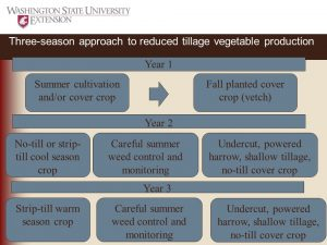 Figure 18a. A possible 3 year rotation to reduce tillage in organic vegetable production for cool-season and warm-season crops