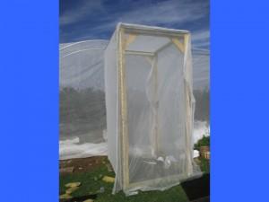 Covered vestibule in progress of fastening netting