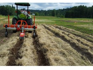 Figure 2b. Custom-built powered strip tiller working in heavy flail-mowed rye residue.
