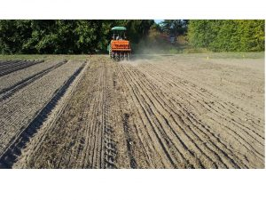 Planting cover crops with minimum till drill in continuous reduced tillage treatment.