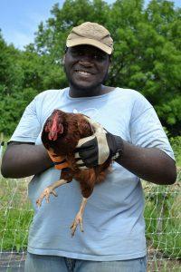 robert_jfc_chicken