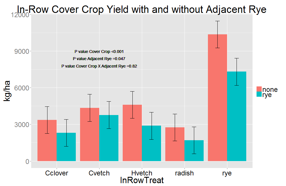 Effect of strip-planting with rye on in-row cover crop biomass at WSU Puyallup Research and Extension Center, 2016.