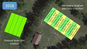 Field plot layout