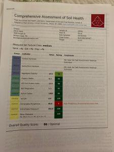 Plot B Soil Sample Results 418