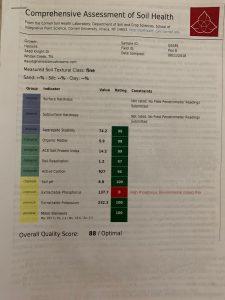 Soil Sample Plot B 818
