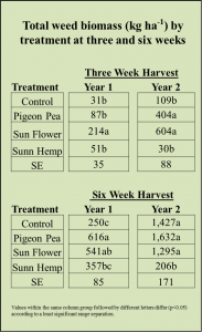total-weed-biomass-3-and-6-weeks-obj-2-year-1-and-2