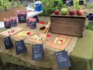Apple Tasting Table