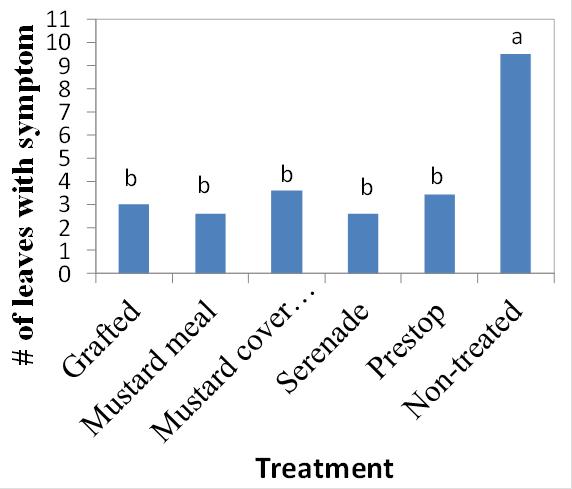 Fig. 3. Verticillium wilt severity
