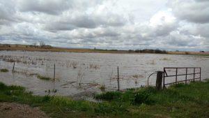 Pasture flooding