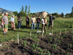 biochar-grower-meeting