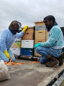 hive on truck