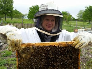 holding hive frame
