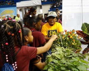 Children inspect the sensory vegetable and herb garden on display at the National Agriculture Day event.