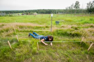 University of Alaska Cooperative Extension Robert White Large Animal Research Station Laura Starr's grazing research