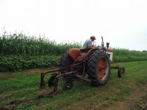 Trialing the NTPA in the rolled/crimped beds, August 2014