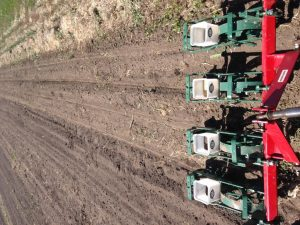 Cole Planter with offset