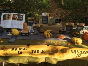 Squash ID Table